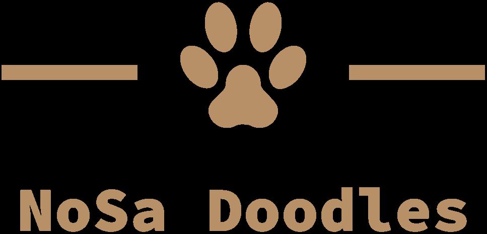 NoSa Doodles Logo